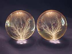 "Pair of 3"" Spheres, natural light"